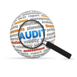 Due Diligence Audit